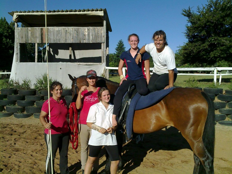 Horse Riding Centurion Lessons Stabling And Camps