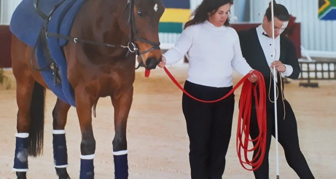 Custom-made Vaulting mats | Bluestone Equestrian